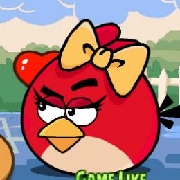 Szerelem rózsa Angry Birds játék